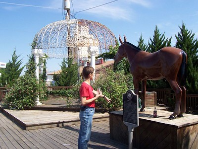 Our first gas stop on Day 2 was in Muleshoe, TX. Caroline learns about THE Muleshoe mule.