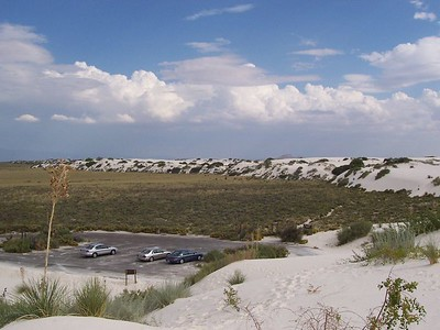Day 4 - The view from atop the edge of the dunes. The further into the dunes you walk, the less plants you see.