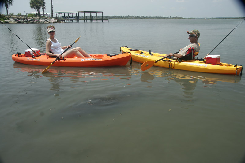 Kim and Dad check out the manatees