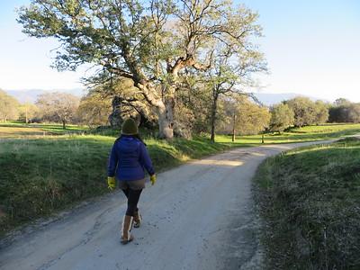 Meditative strolling in the Sierra Foothills.