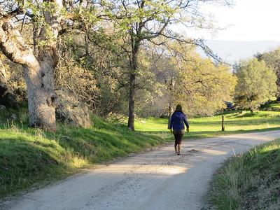 Walking the Path.