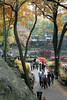 Autumn foilage at Central Park.