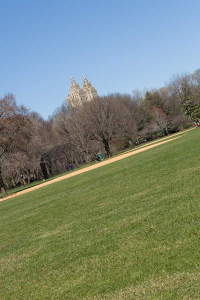 Baseball fields in Central Park