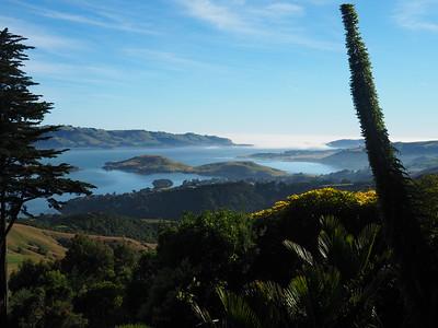 20 Dunedin / Otago Peninsula