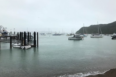 Arriving in Paihia harbor.