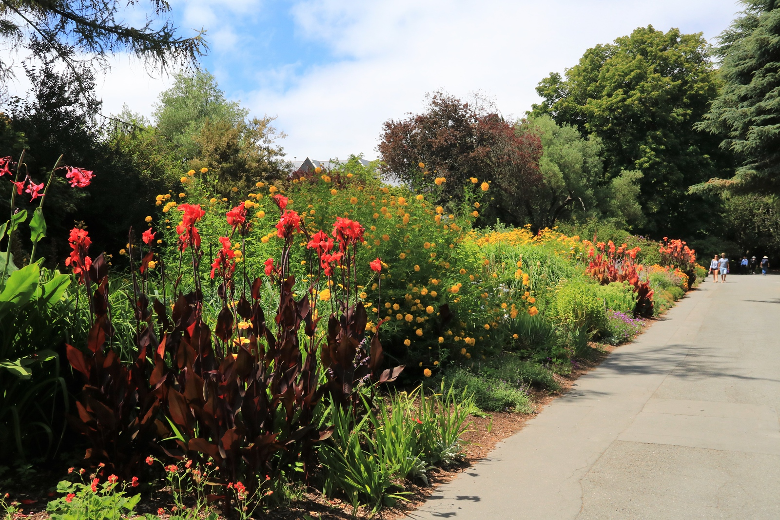 """They called this """"the herbaceous border"""".  All the plants were perennials."""