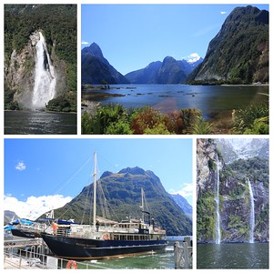 "First day at Milford Sound...according to our guide it is the ""the best place on the planet"""