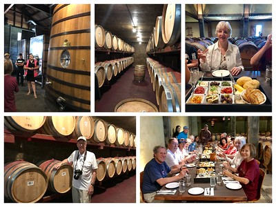 Besides the Kiwi, New Zealand is also about the wine! We had a great tour and lunch at the Church Road winery in the Hawkes Bay area, just outside of Napier.