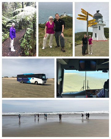"""Wow....what a day here in NZ! It didn't rain today and we traveled to the northernmost point of the North Island! Visited 1000 year old Kauri trees🌲. Our bus actually drove on """"90 Mile Beach"""" (which is not really 90 miles long!)"""