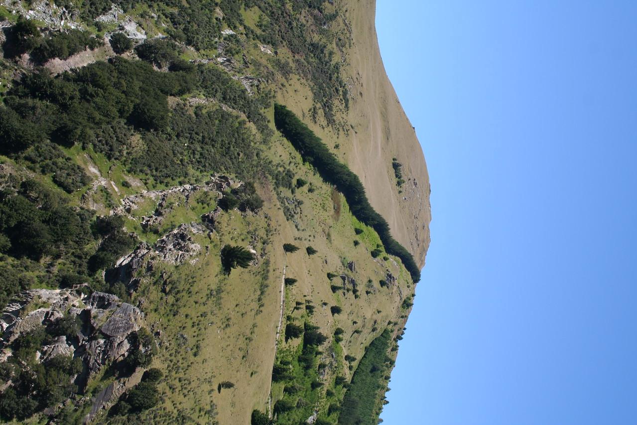 Hillside outside of Queenstown New Zealand.