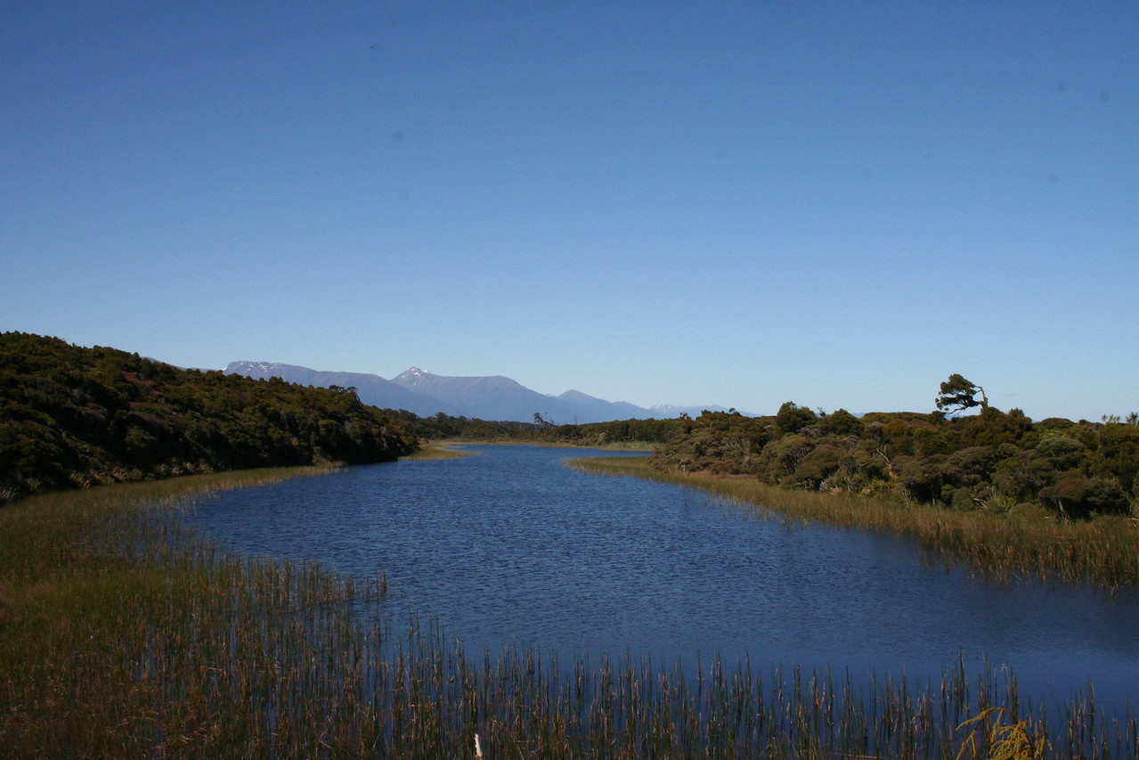 A fresh water lake between the old dunes north of Haast Beach. The water is rich in tannins so is dark like root beer!