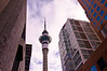 The Auckland Sky Tower.  Many people think it looks like a large hypodermic needle.