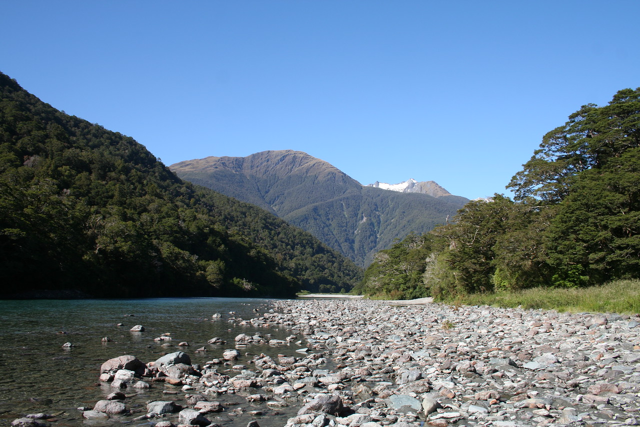 Another beautiful stream on teh South Island.