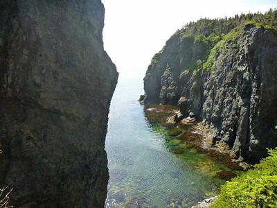 Coastal view on Trinity Bay.