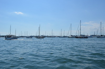 Tons and tons of sail boat in the bay.
