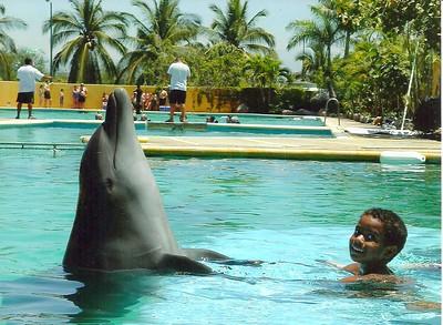 Noah & Dolphin