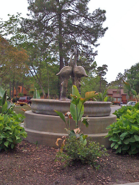 The fountain at the Links resort.