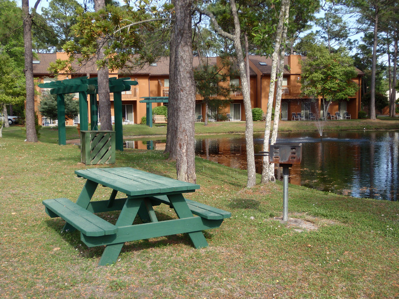This picnic area and pond is right out our front door.