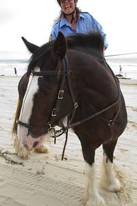 20110723_Oceano_Dunes_007