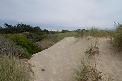 20110723_Oceano_Dunes_024
