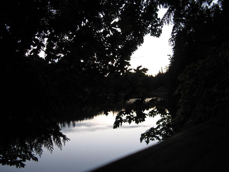 Evans Bay 1
