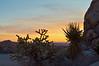 Old Woman Mountains Mojave Desert