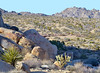 Old Woman Mountains Mojave Desert