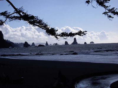 Sea stacks, third beach.