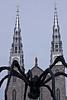 Ottawa Spider NOTRE DAME BASILICA