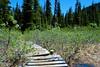 Hike to Rainbow Lake