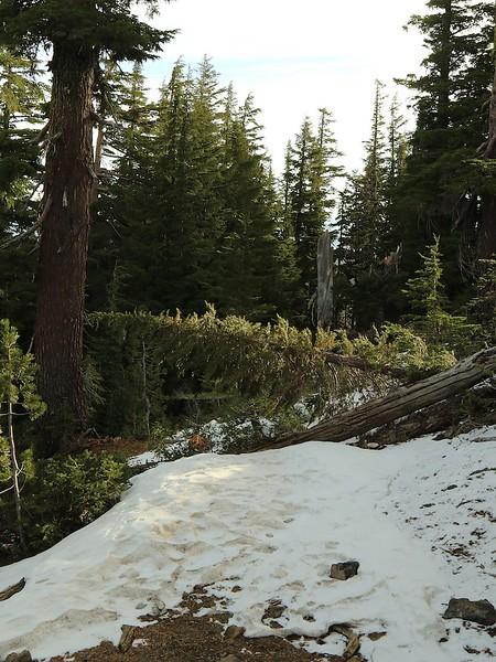 Oregon vacation Oct2017 0322