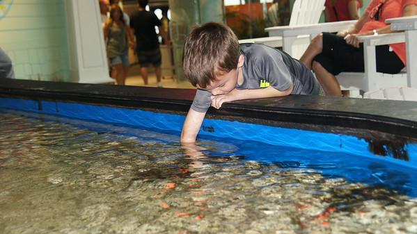 Day 7 - Tampa Aquarium new