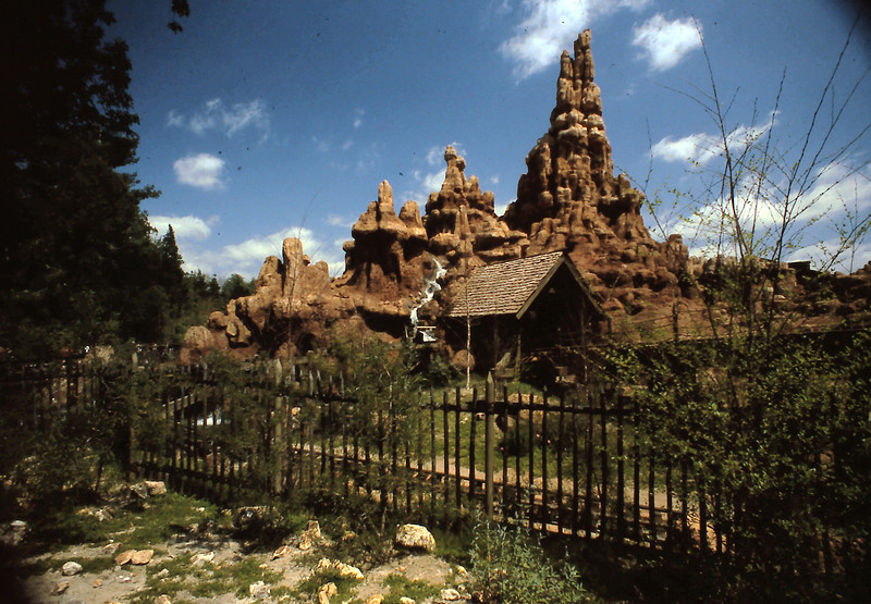 Here is more scenery from Adventureland.