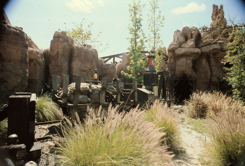 This shows some of the scenery during the Runaway Mine Train.