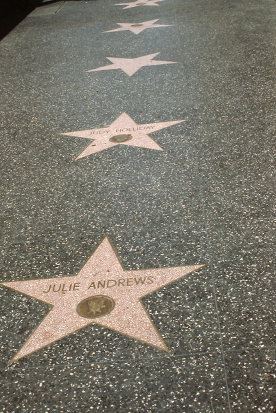 This shows the Hollywood Walk of Fame.  There are stars inset into the sidewalk for all the celebrities being honored.
