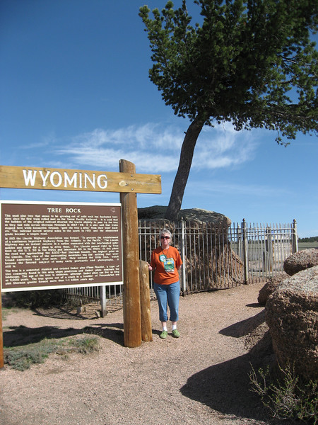 Interesting tree in Wyoming, so interesting it got a special marker (which we stopped to read, of course)
