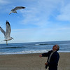 Favorite passtime--David feeding the seagulls--mid-air.