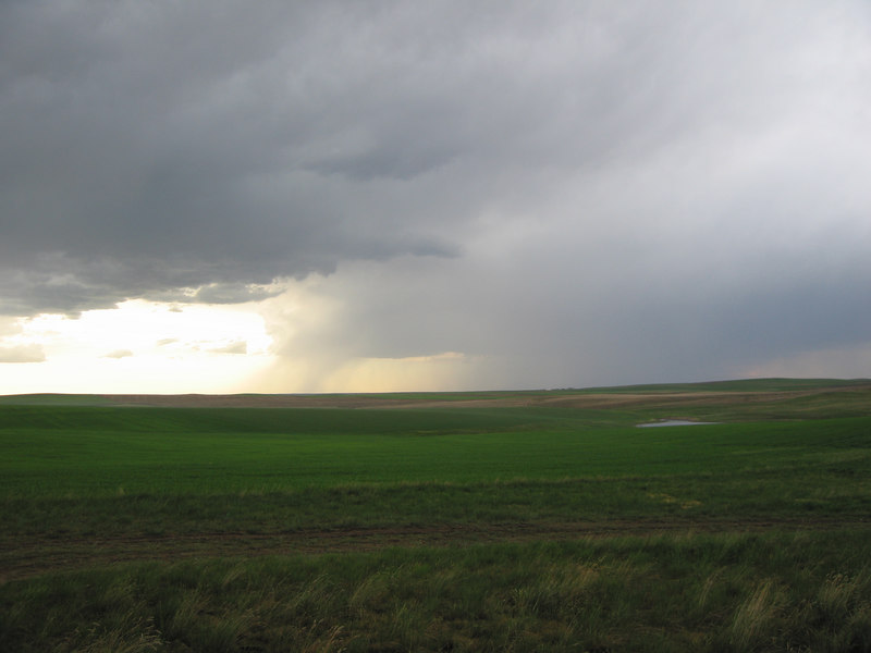 Thunderstorms over the prairie