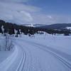 Nice. Utsikt nordøstover (ca) ved Lundsætra.