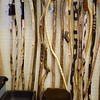 Walking sticks. A stick for everyone.