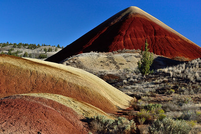 John Day Fossil Beds Nat'l. Monument - Painted Hills Unit.