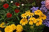 Butchart Gardens - Victoria British Columbia