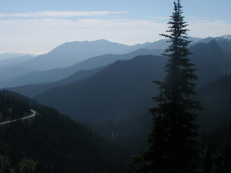 Hurricane Ridge, Olympic National Park