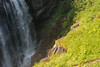 Narada Falls - to tall for the camera viewfinder to capture it all!