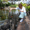 Kim feeding the Black Swans outside the Kauai Grand Hyatt Resort and Hotel