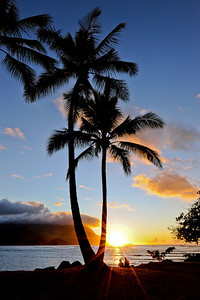 Sunset next to the palm trees on the beach at Hanalei Bay
