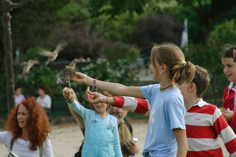 These children were feeding the birds outside Notre Dame