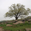 Gettysburg PA 60