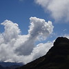 Llamas are even in  the clouds