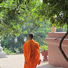 A Buddhist monk at the Wat Phnom, Phmon Penh, Cambodia